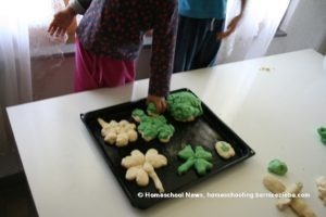 Homeschool-News-St-Patricks-Day-Bernice-Jan-Zieba05