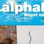 Homeschool News, alphabet, Angst oder Liebe, Jan Zieba, Bernice Zieba