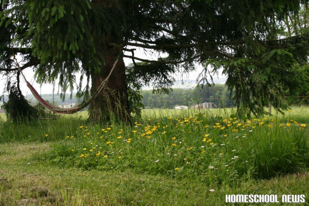 Garten, Homeschool News, Jan und Bernice Zieba