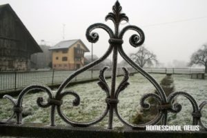 Schnee-Impressionen, Snow Impressions