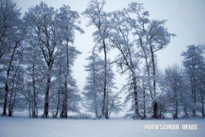 Schnee-03