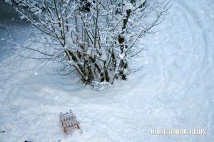 Schnee-15