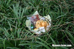 Osternest im Grünen