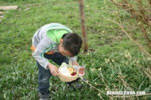 Osternest im Grünen gefunden