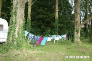 England in Pictures, Bernice Zieba, Homeschool News