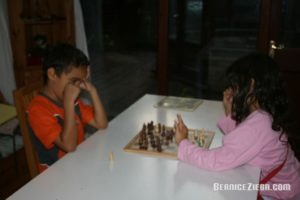 Chess, Schach, Homeschool News and Blog, Bernice Zieba