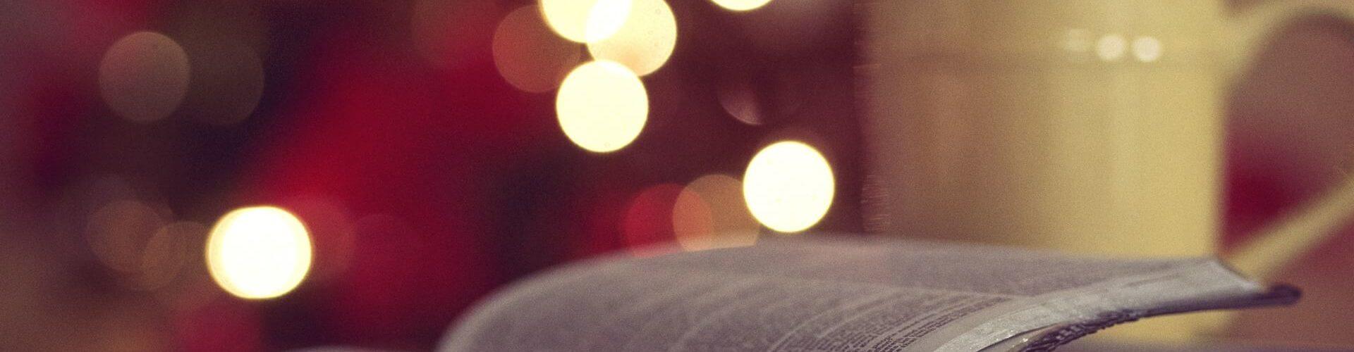 Ein Buch zu Weihnachten: Die drei Nüsse