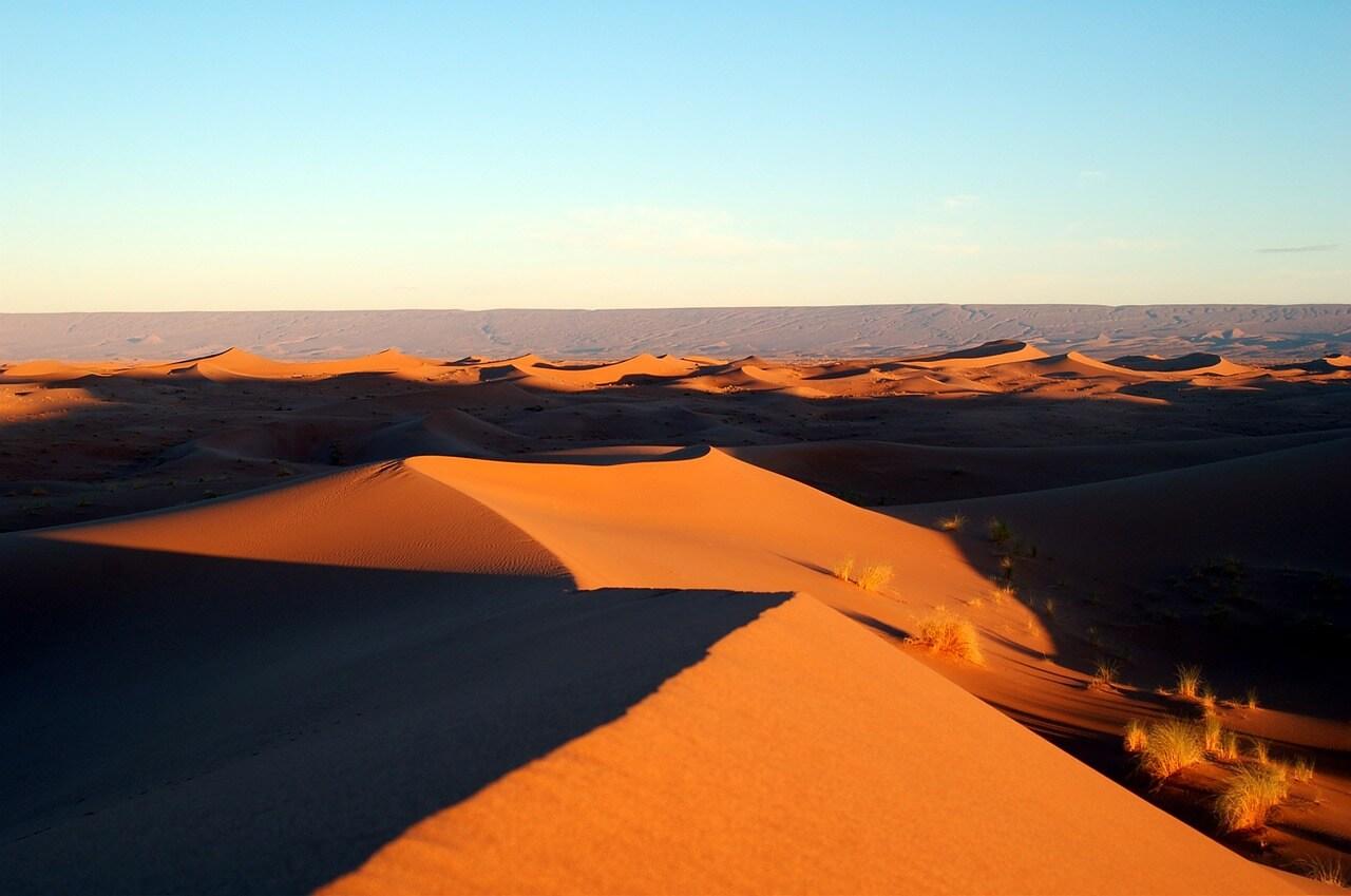 The desert, Die Wüste