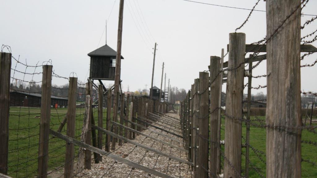 Majdanek-05 Cropped
