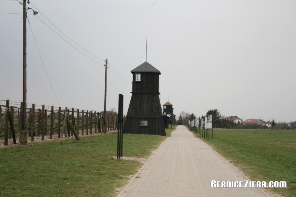 Majdanek-06