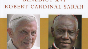 Robert Cardinal Sarah, Benedict XVI: From the Depth of our Hearts